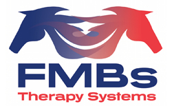 fmb therapy