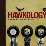 Hawkology_A_Hawk_Nelson_Anthology