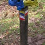 Wandelen in Oase Ter Apel en over het Westerwoldepad