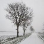 FLAL Vrijbuiter wandeltocht 2017 rond winters Roden