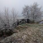 Een uitgebreide Groene Wissel wandelen door witgerijpt Skarsterlân