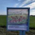 Tocht om de Noord 2018: Vergezichten van De Ploeg – dag 2