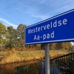 In Zwolle op de loop van de Westerveldse Aa