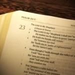 Psalm 23: Je hoeft niet bang te zijn