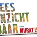 Wandelend met eigen ogen de Bijlmer zien van Murat Isiks Wees Onzichtbaar