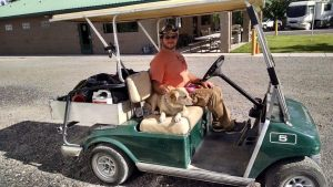 levi and brewy on the cart