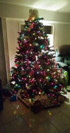 Christmas tree at the Flores house.