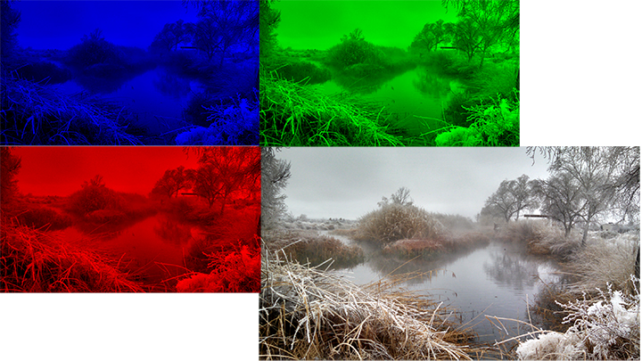 Photography 101 Our eyes and camera see only red, green, and blue. Those colors combine to create the true color we see.