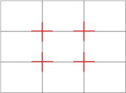 The rule of thirds grid is made by splitting the image into 3 parts horizontally and vertically.