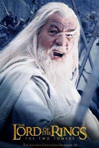 07 Gandalf 201x300 Властелин Колец   Постеры
