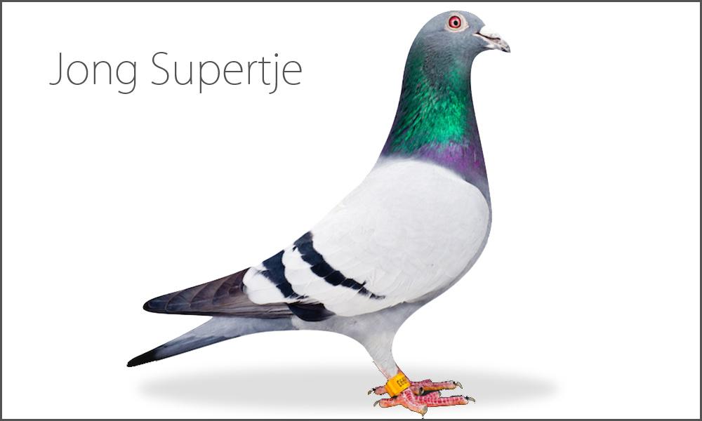 Jong Supertje