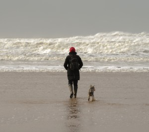 Dog exercise whatever the weather