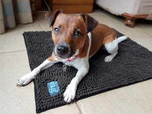 Henry Wag Noodle Mat