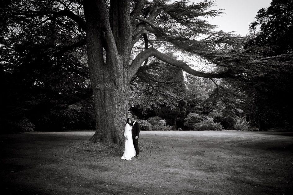 wivelsfield-wedding-photography-landb-475