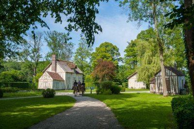 Balade avec les chevaux Henson au hameau du château de Chantilly