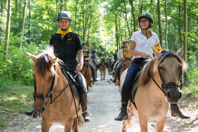 Ride with the Henson horses in the park of the Chantilly's Castle