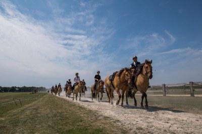 Balade au Polo-Club Ferme d'Apremont avec les chevaux Henson