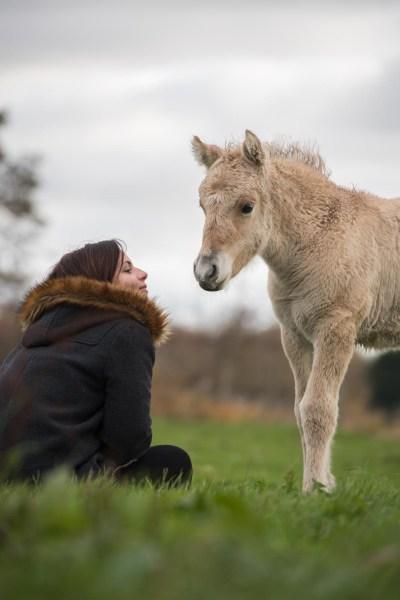 Manipulation of foals