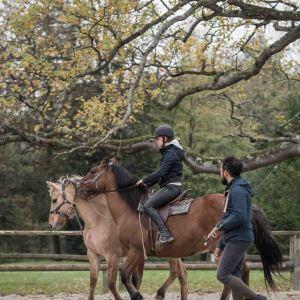 Formation - Espace Equestre Henson-Marquenterre