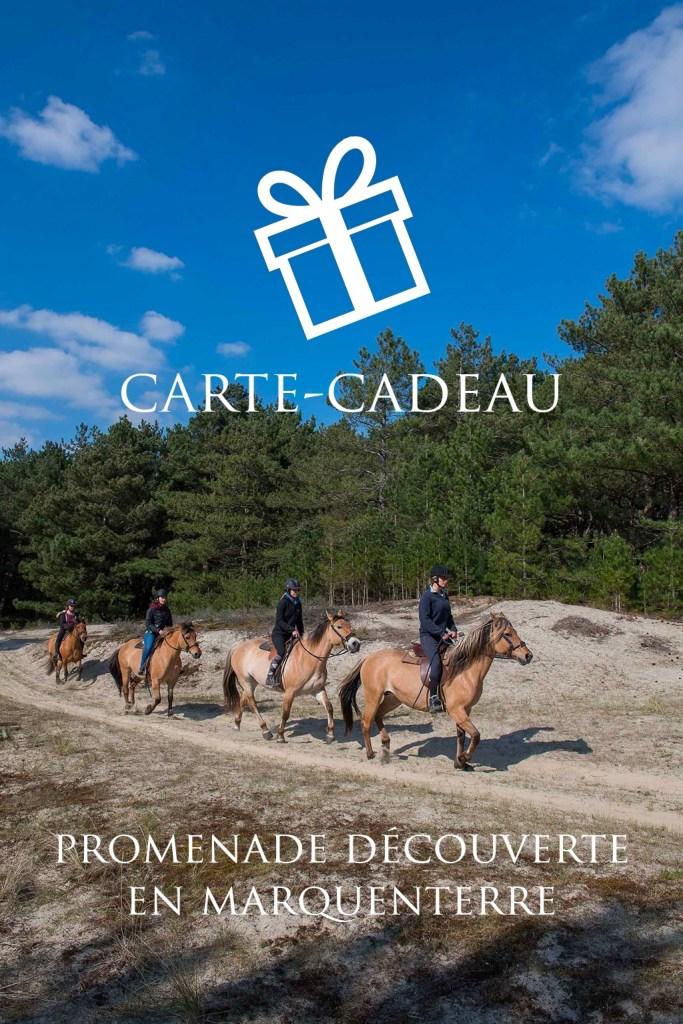 Carte-Cadeau | Promenade Découverte en Marquenterre