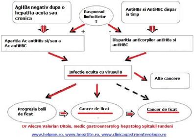 infectia-cu-virusul-b-si-cancerul-de-ficat