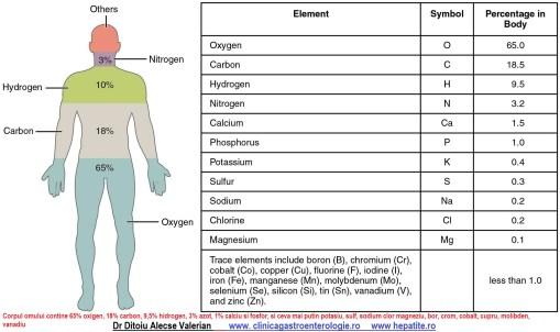 Chimicalele din corpul omului