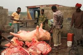 butchers at abattoir
