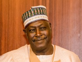 Image result for Lawyer questions Senate's call for SGF's resignation
