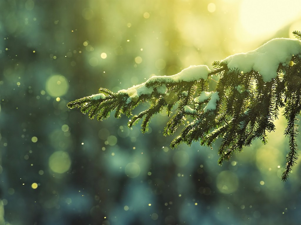 glitering-snow-christmas-tree-27733-hd-wallpapers-free