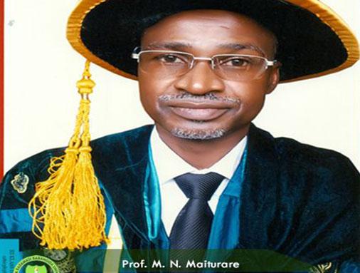 Professor Muhammad Maiturare