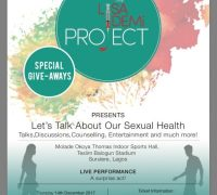 lisa_demi_project