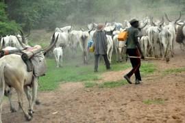 Fulani Herdsmen at the trent fotor