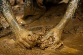 gold mine collapse six workers die