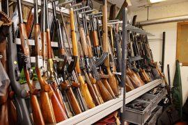 firearms weapons ammunitons guns