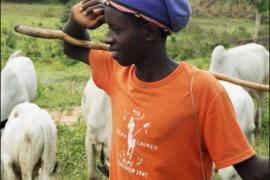 Fulani boy