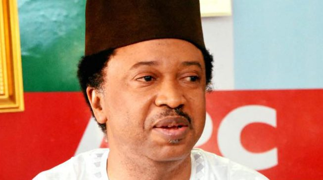 Image result for BREAKING: APC suspends Senator Shehu Sani