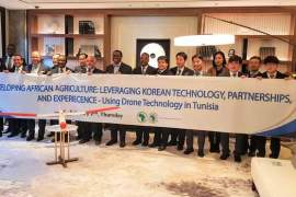 South Korea partners Africa