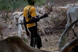 herdsmen with gun