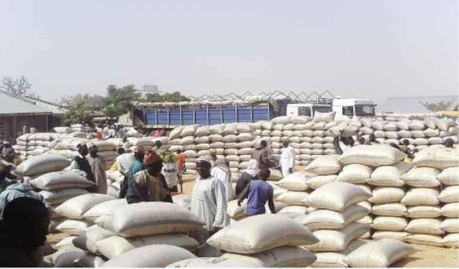 sacks of maize