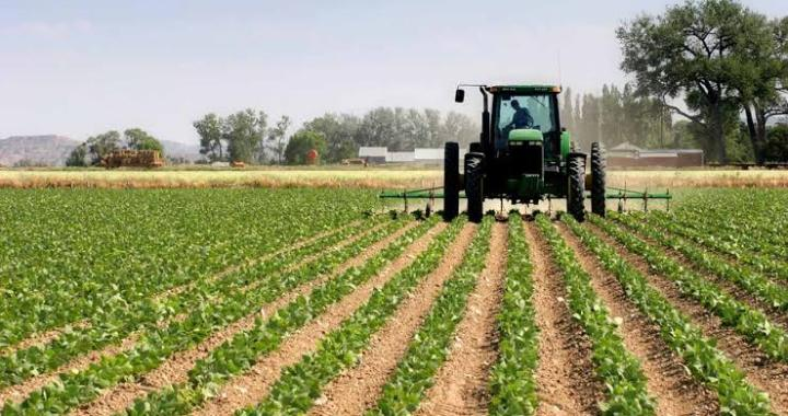 lawmaker urges youth to embrace Agro-business
