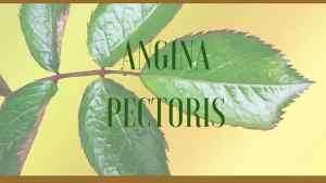 angina herbal remedy