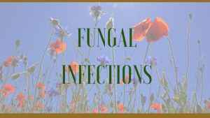 herbal remedies for fungal infections