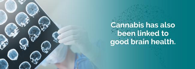 marijuana brain health