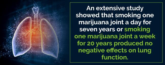 marijuana lung study