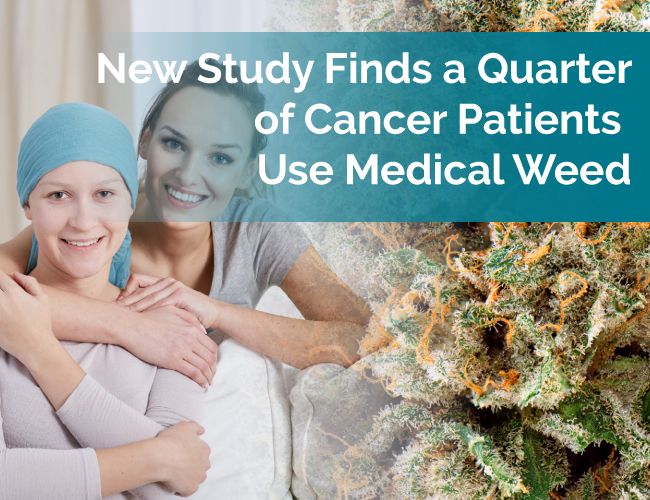 cancer marijuana study