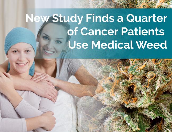 cancer marijuana study