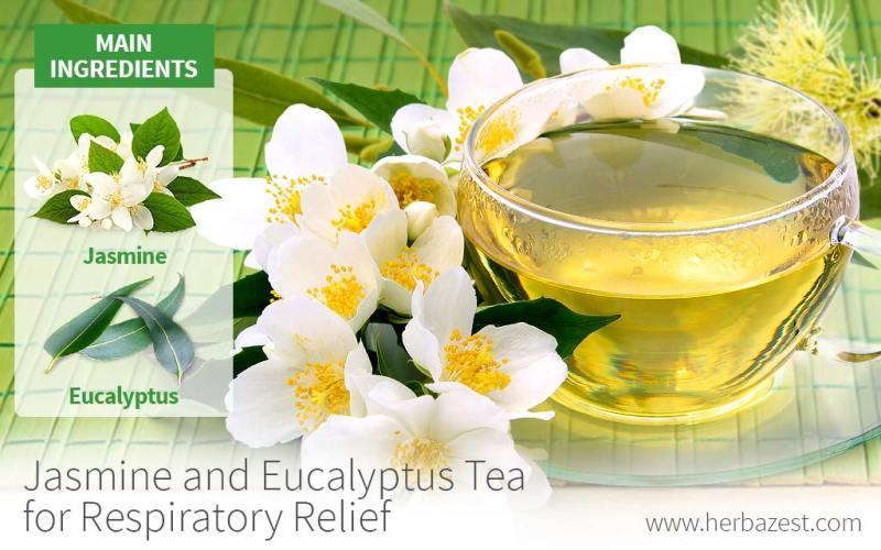 Eucalyptus Tea