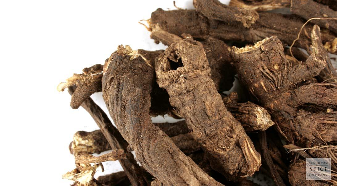 Osha Root Medicinal Properties and Bulk Osha Root