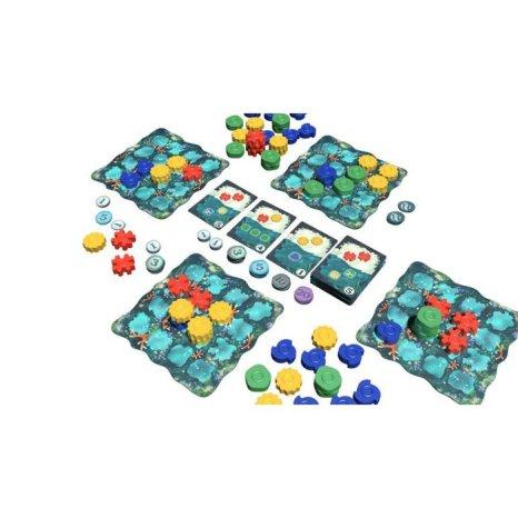 Plancia, coralli e carte di Reef