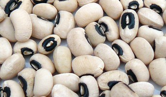 Graines de haricot cornille (mei dou) – 眉 豆